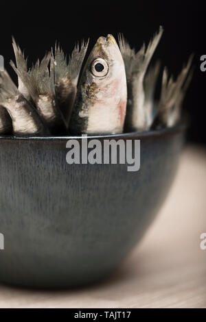 Anchovies in bowl on dark background - Stock Photo