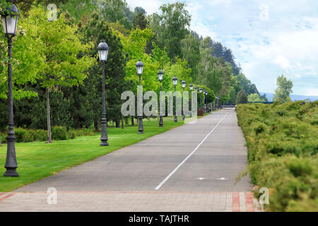 A straight asphalt road and a bike path go along a beautiful, clipped green lawn through a summer park, on the edge of the road are many beautiful old - Stock Photo