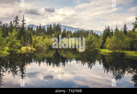 Reflections of the Forest on a Wilderness Lake - Stock Photo