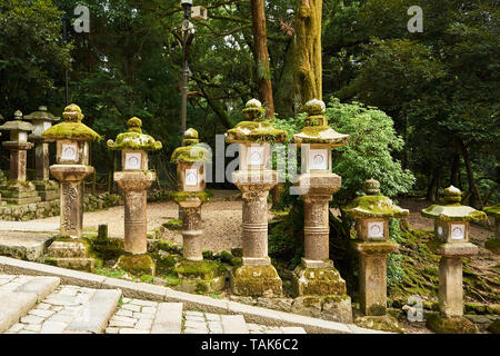 Old stone lanterns line a stone staircase outside of Kasuga Taisha Grand Shrine in Nara, Japan. - Stock Photo