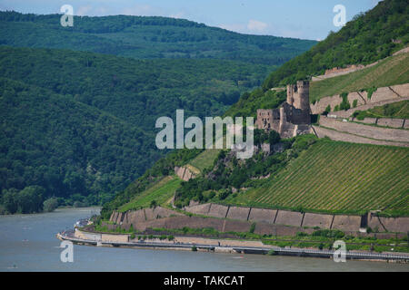 Ehrenfels Castle, Burg Ehrenfels on Rhine river near Ruedesheim and Bingen am Rhein, Hessen, Germany - Stock Photo