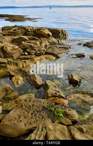 A vertical landscape of a rocky shore along the coast of Vancouver Island on the Strait of Georgia in British Columbia Canada