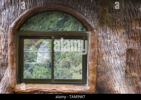 Tropical Rainforest Jungle Reflection in Rustic Log Cabin Window, Arenal Volcano National Park near La Fortuna Costa Rica - Stock Photo