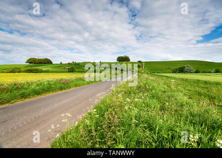Hackpen Hill and it's White Horse near Swindon in the Wiltshire countryside - Stock Photo
