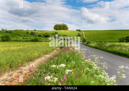 The white horse on Hackpen Hill at the Ridgeway on the Malborough Downs in the Wiltshire countryside - Stock Photo