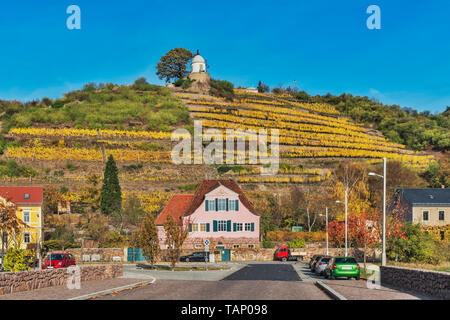 Haus Fliegenwedel is a listed, baroque winegrower's house below the vineyards of Radebeul. Above is the Jacobstein, Saxony, Germany, Europe - Stock Photo