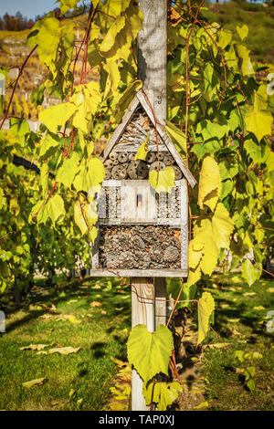An insect hotel or insect house, is a manmade structure created to provide shelter for insects - Stock Photo