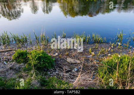 River pollution. Plastic bottles and other litter and rubbish in reeds on the riverbank, River Trent, Nottinghamshire, England, UK - Stock Photo