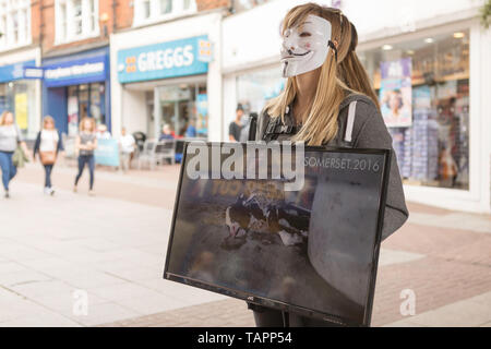 Southend on Sea, UK. 27th May, 2019. Direct action demonstration to show information to the public about the cruelty inherent in meat, dairy and egg production. Credit: Penelope Barritt/Alamy Live News - Stock Photo