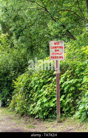No camping or overnight parking warning sign on post with red lettering on rural road beside green trees. - Stock Photo