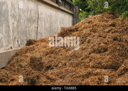 Horse manure pile behind the stable on the livestock farm - Stock Photo