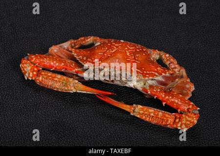 Delicous Boiled crab - ready for eat - Stock Photo