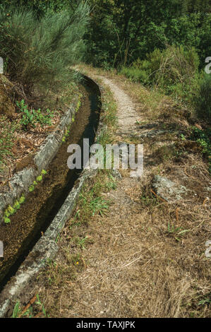 Concrete drainage canal next to dirt path on wooden terrain at the Serra da Estrela. The highest mountain range in continental Portugal. - Stock Photo