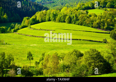 Green idyll in the Rhoen in the heart of Bavaria, Germany - Stock Photo