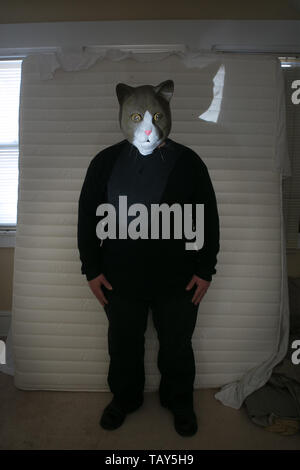 man wearing a mask of a cat standing in a bed room in front of a mattress leaning against a window - Stock Photo