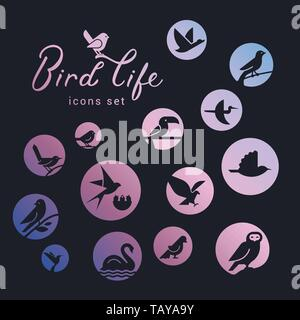 Vector icon set of icons inscribed in a circle filled with a gradient on the theme of wild bird life. Bird wounds in linear style. Design concept. - Stock Photo