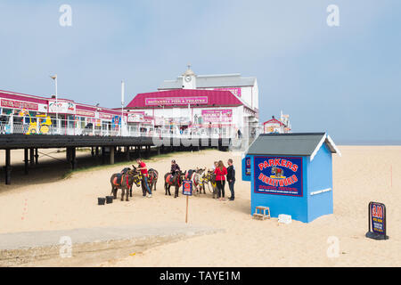 Great Yarmouth beach pier and donkeys - a traditional british seaside scene - Great Yarmouth, England, UK - Stock Photo