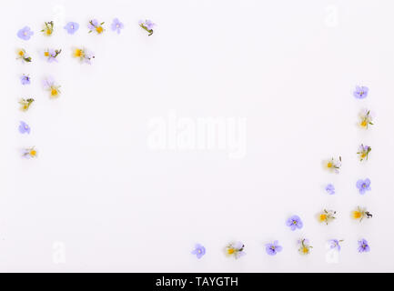 Floral pattern on a white background, small white yellow flowers - Stock Photo