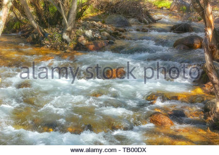 Manzanares river, at regional park of La Pedriza (Manzanares El Real - Madrid - Spain). Rapids zone. Lights contrasts due to shadows in the forest - Stock Photo