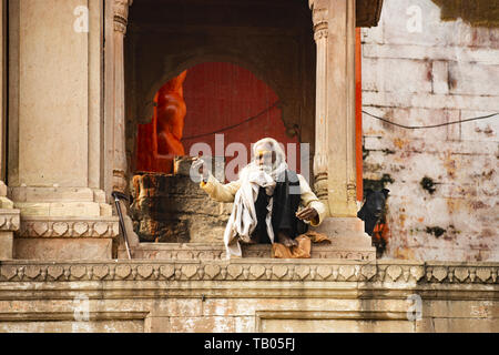 A Sadhu with a long white beard and his dog are sitting on a Ghat in Varanasi. Sadhu is an ascetic or someone who practice yoga - Stock Photo