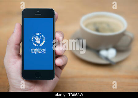 A man looks at his iPhone which displays the World Food Programme logo (Editorial use only). - Stock Photo