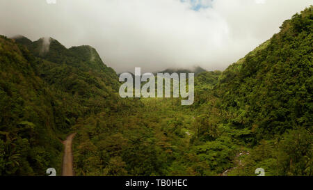Mountains covered rainforest, trees and river in cloudy weather, aerial drone. Camiguin, Philippines. Mountain landscape on tropical island with mountain peaks covered with forest. Slopes of mountains with evergreen vegetation. - Stock Photo