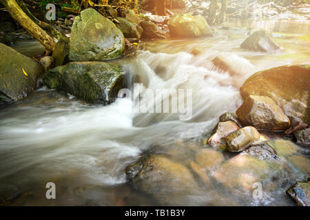 Rocky stream river small waterfall flowing from the mountain in the nature rain forest - Stock Photo