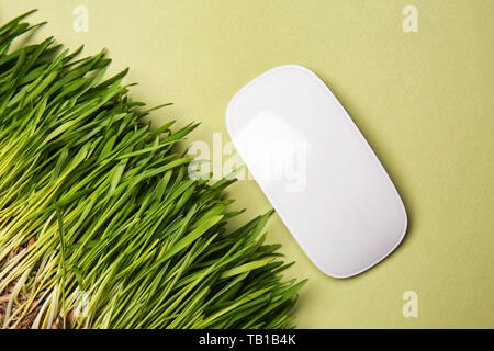 Green grass with computer mouse on color background. Ecology concept - Stock Photo