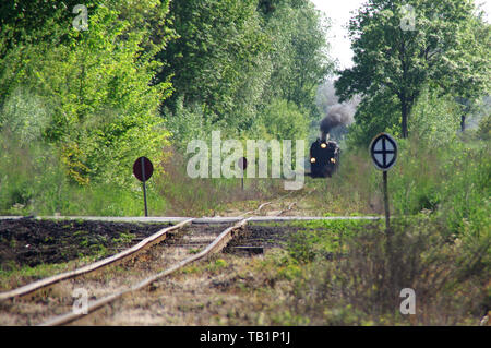Old passenger train running on tracks through the forest. A retro locomotive with a steam engine drives along old curved tracks. - Stock Photo