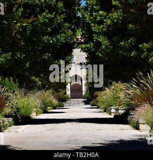Cimiez gardens Nice, South of France French Riviera summer sunshine clear blue sky - Stock Photo