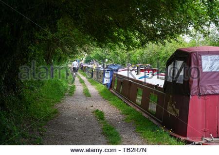 Man walks his dog past moored narrowboats near Crick in Northamptonshire. - Stock Photo