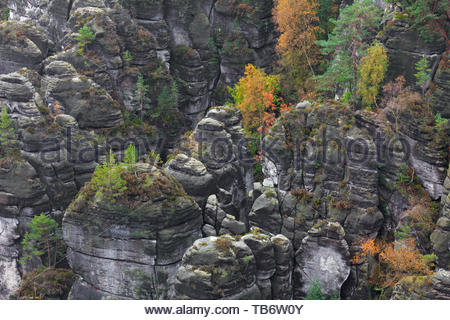 View over the Raaber Kessel in the Elbe Sandstone Mountains, Saxonian Switzerland National Park, Saxony, East Germany - Stock Photo