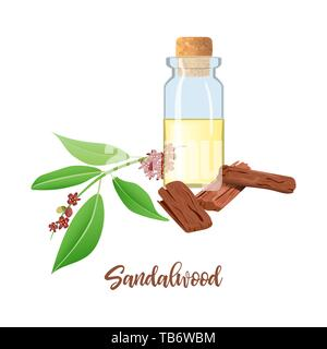 Sandalwood essential oil in glass bottle with cork, Chandan leaves, sticks, aromatherapy, perfume, spa, ayurveda - Stock Photo