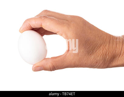 White chicken, hen egg held between hand, fingers isolated on white background. - Stock Photo