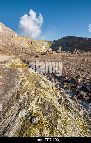 Yellow sulphur and fumaroles on the volcanic island of White Island, Whakaari, Bay of Plenty, North Island, New Zealand - Stock Photo