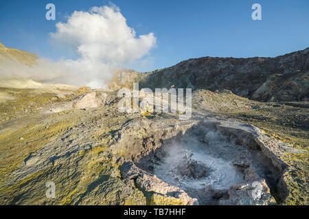 Geyser and fumaroles on the volcanic island White Island, Whakaari, Volcanic Island, Bay of Plenty, North Island, New Zealand - Stock Photo