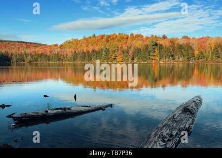 Lake with Autumn foliage,wood log at shore and mountains with reflection in New England Stowe - Stock Photo