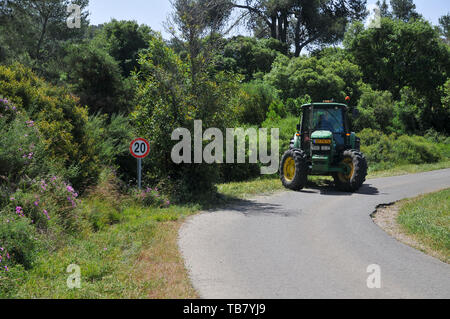 Forester clears weeds from a fire path in a forest. Photographed in the Carmel Mountains forest, Israel - Stock Photo