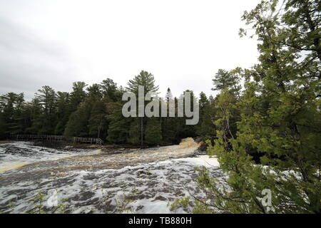 Wide angle view of a distant waterfall with a cedar tree in the foreground - Stock Photo