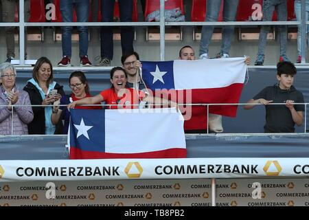 Regensburg, Deutschland. 30th May, 2019. firo: 30.05.2019, Football, Landerspiel, Test Game Women, Germany - Chile, Fans, Scarf, Flags, Chile, CHI, | usage worldwide Credit: dpa/Alamy Live News - Stock Photo