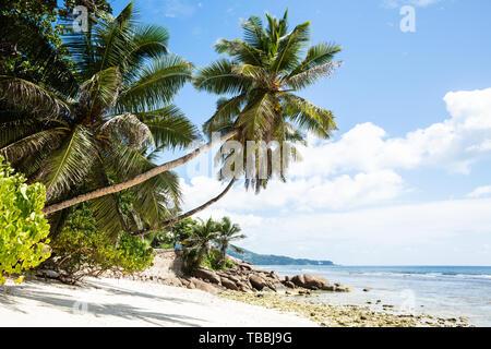 Scenic View Of Idyllic Anse Baleine Beach, Mahe Island, Seychelles - Stock Photo