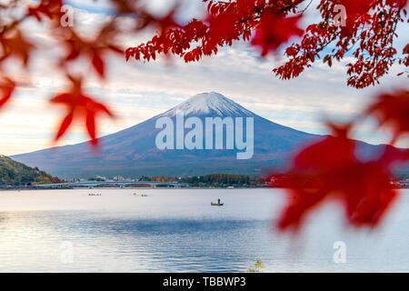 Mount Fuji and Lake Kawaguchiko in Autumn Leaves - Stock Photo