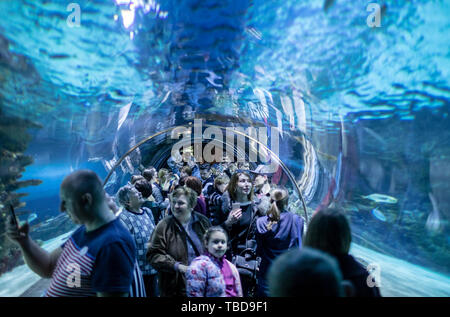 BUDAPEST, HUNGARY - 24 August, 2018: A lot of people and giant whale shark of fantasy underwater with dramatic light ray in Oceanarium - Stock Photo
