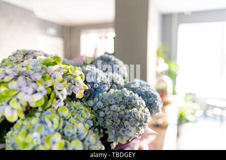 In the foreground a bouquet in a vase on the background of a flower shop. Summer bouquet. Flowers delivery - Stock Photo