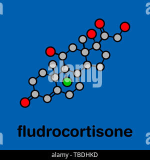 Fludrocortisone aldosterone hormone substitution drug molecule. Stylized skeletal formula (chemical structure). Atoms are shown as color-coded circles with thick black outlines and bonds: hydrogen (hidden), carbon (grey), oxygen (red), fluorine (green). - Stock Photo
