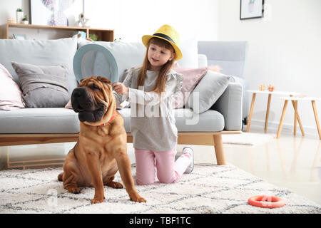 Cute little girl playing with funny dog at home - Stock Photo