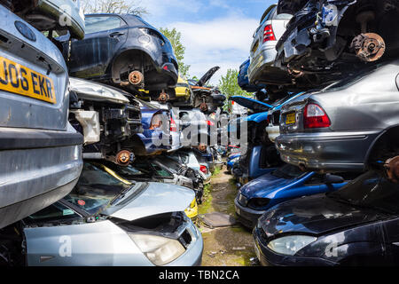 Cars with their wheels removed are stacked in rows of piles of 3 cars with paths between them in a breakers scrap yard - Stock Photo