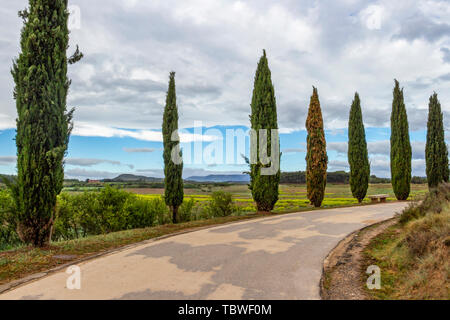 A paved path leading to Pantano de la Grajera or La Grajera Reservoir on the Way of St. James, Camino de Santiago near Logrono, La Rioja, Spain - Stock Photo