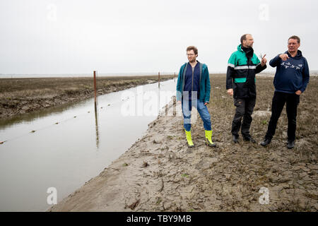 31 May 2019, Schleswig-Holstein, Dagebüll: Jan Philipp Albrecht (Bündnis 90/ Die Grünen, l), Minister for Energy Turnaround, Agriculture, Environment, Nature and Digitisation in Schleswig-Holstein, Johannes Oelerich, Head of the Department for Water Management, Marine and Coastal Protection and Federal Commissioner for Hydraulic Engineering in the Kiel Ministry for Energy Turnaround, Agriculture, Environment, Nature and Digitisation (Melund), and Harald Förster (r), Managing Director of the Wadden Sea Protection Station, are standing at the fox barrier halfway between the Halligen Langeness an - Stock Photo
