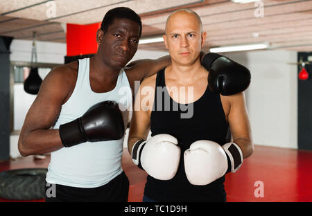 Portrait of two glad cheerful positive male boxers standing in the ring - Stock Photo